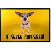 Chihuahua - It Never Happened